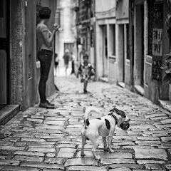 black & white street people travel places