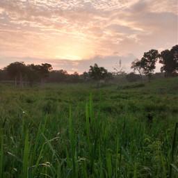 goodmorning sunrise uxmal yucatan mexico