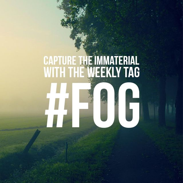 fog photo tag