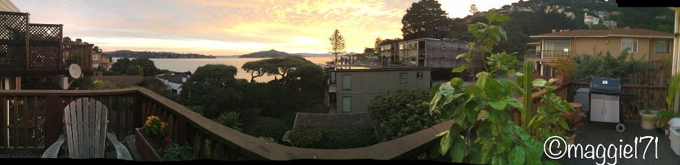 nature beautiful sunrise sausalito