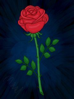 dcrose flower drawing rose colorful