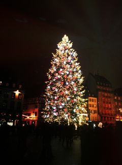 christmastree light winter strasbourg