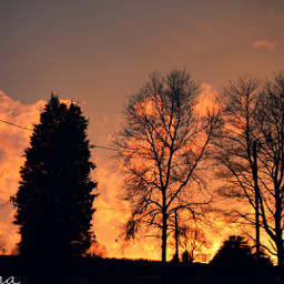 sunset firstcamerapic