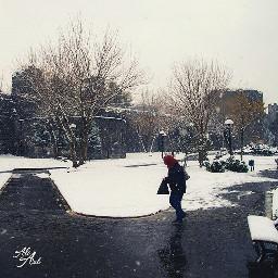diyarbakır winter love people travel